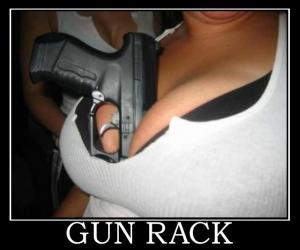gunrack.jpg